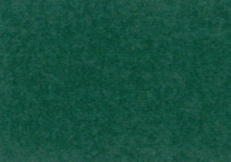 合繊帆布ビニールカバー 6号 グリーン生地画像