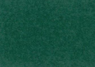合繊帆布ビニールカバー 5号 グリーン生地画像
