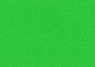 パワーシートタイプ ライトグリーン生地画像